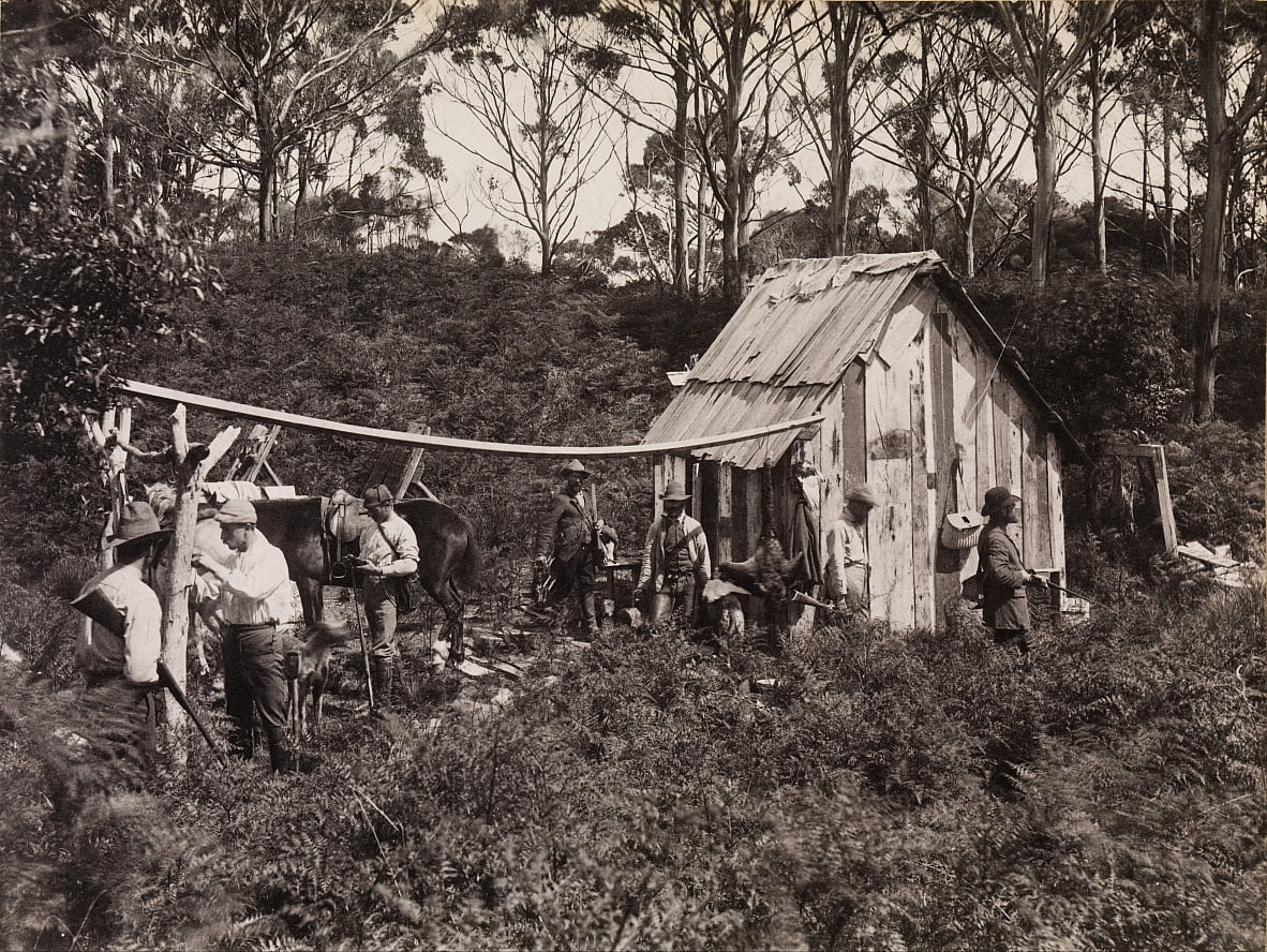 Bertie&39;s Hut, Expedição do Clube de Naturalistas de Campo para King Island de Archibald James Campbell