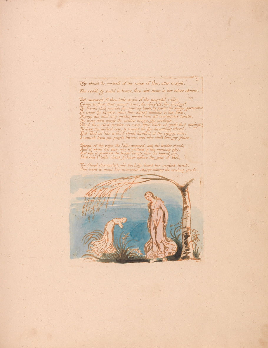 O Livro de Thel, Placa 4, Por que a amante deveria. . . . de William Blake
